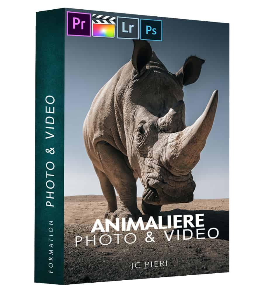 Packs Photo & Video Animalière Ok