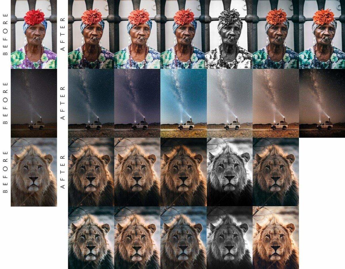 Presets Portrait Safari